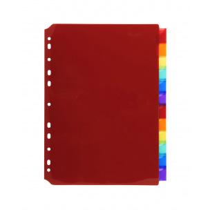 Intercalaires à onglets neutres porte-étiquettes Exacompta - plastique de couleur - A4