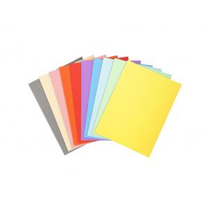 Chemises Exacompta FOREVER en carton 170 g - A4 - assortiment de couleurs