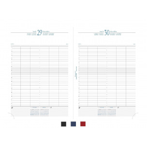 Agenda Exacompta JOURNAL 29/1 - 21 x 29,7 cm - 1 jour par page